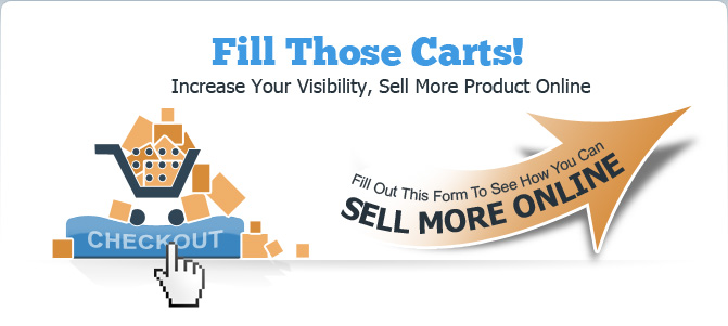 Fill out the form on the right to find out how you can sell more online
