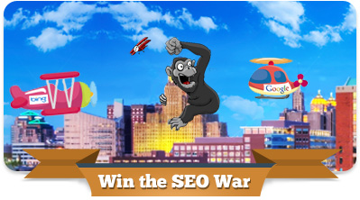 Buffalo Search Engine Optimization